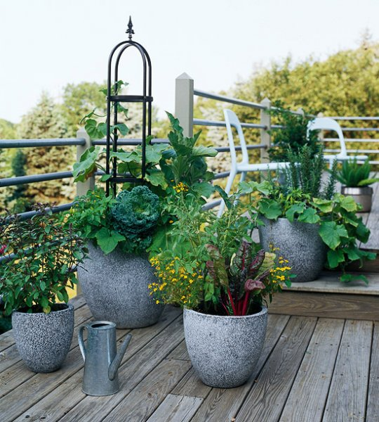 Remodelaholic 25 edible garden ideas - Better homes and gardens container gardening ...