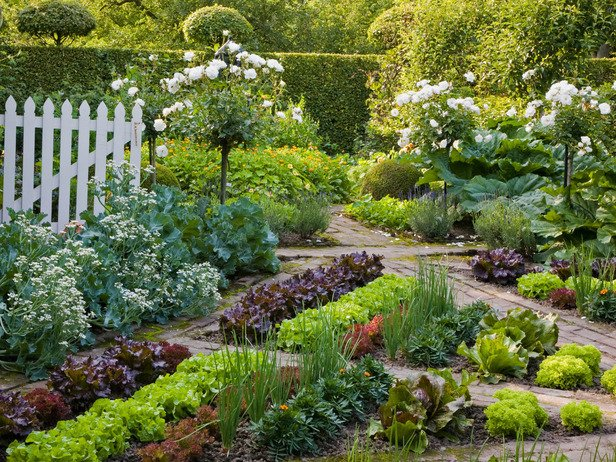 Edible Garden Ideas ediblegarden Geometric Garden
