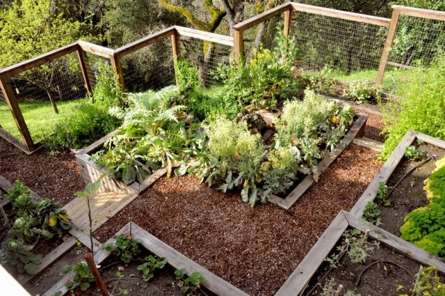 Remodelaholic 25 edible garden ideas for Edible garden design ideas