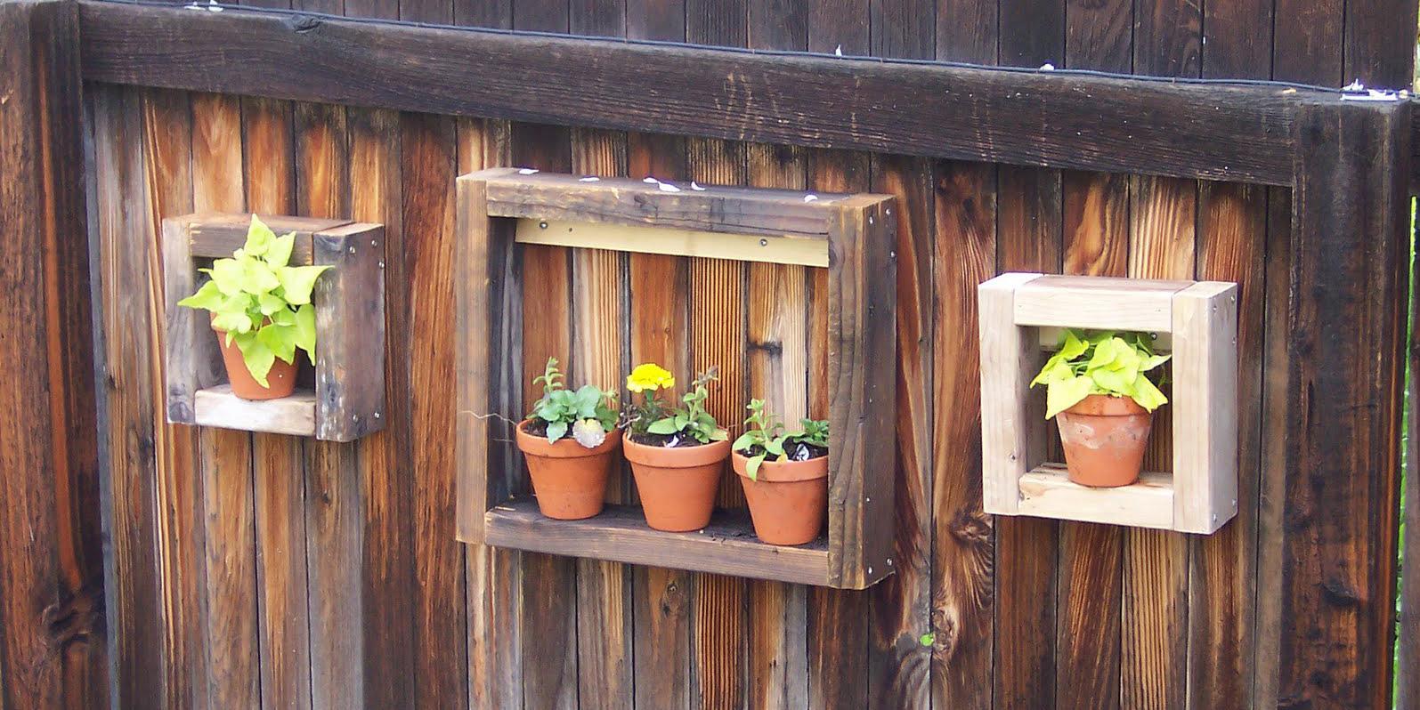 Boxer; Garden Display Box