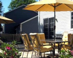 backyard overhaul with new landscaping and patio furniture