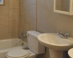 remodelaholic-remodeling-bathroom-gut-tile-tan (570x260)