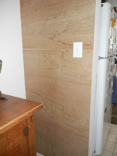 Penny accent wall (1)