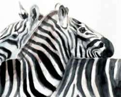 Watercolor wildlife painting of zebras by Elena Romanova