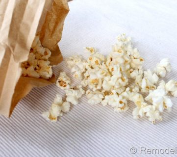 Air Popped Popcorn in a Brown Bag!