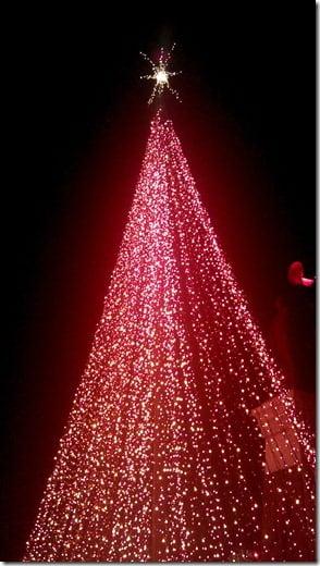 Temple Square Lights (1)