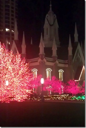 Temple Square Lights (6)