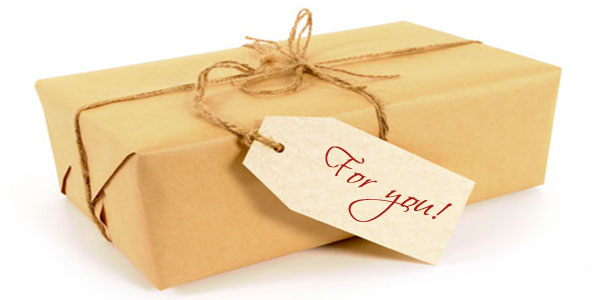 Brown paper package tied with string (XL)