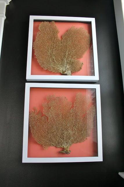 Dwellings by Devore framed coral