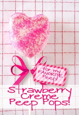 Peep-Pops-valentine-dipped-marshmallows-white-chocolate-sprinkles3 (10)