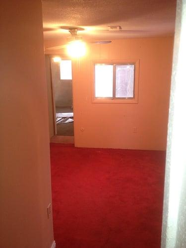 Lindsay & Drew pink carpet