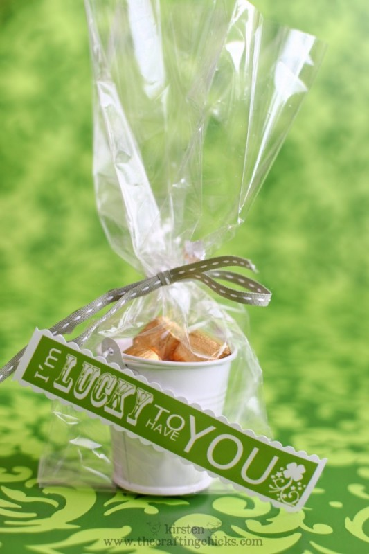 St. Patricks day favors from The Crafting Chicks