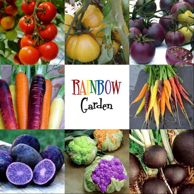 Not Just a Housewife rainbow garden, Gardening Ideas for your whole family!