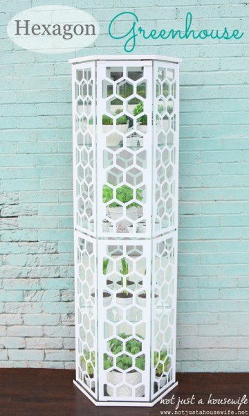 turn an old curio into a hexagon greenhouse, Not Just a Housewife