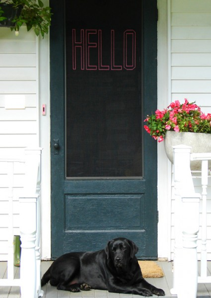 stitch a welcome on your screen door, Design Sponge