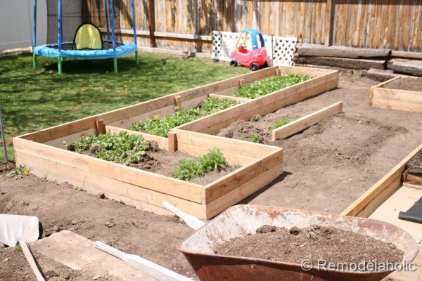 Building Garden Box Custom Raised R Throughout Design Ideas