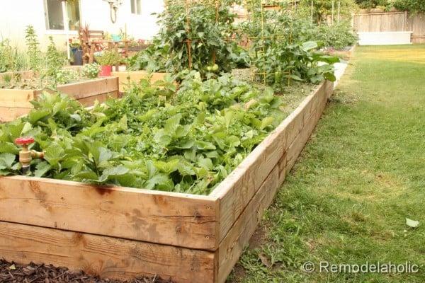 custom raised garden boxes-35