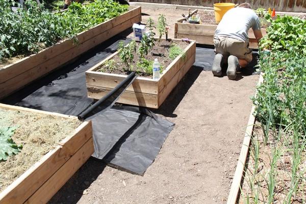 raised garden bed weed barrier