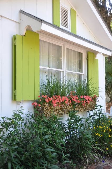 Exterior Window Treatments To Add Color Part 33