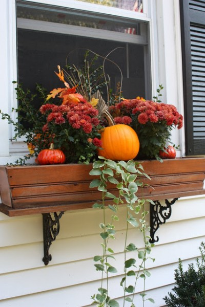 fall window box decor, Six in the Suburbs