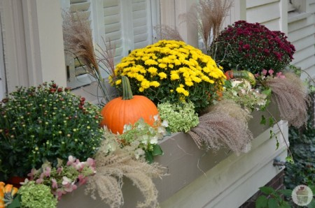 fall window boxes with mums, Hoosier Homemade