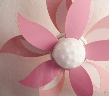 Lovely Flower Fan!