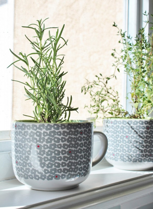 grey coffee mug herb planters in the windowsill, House For Five featured on Remodelaholic