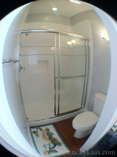 New Master Bath Shower room