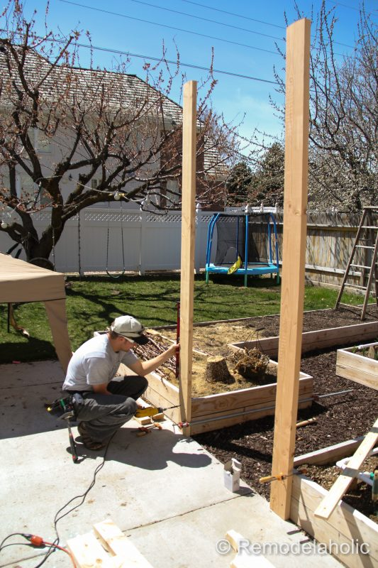 Vegetable Garden Arbor DIY Plans-20