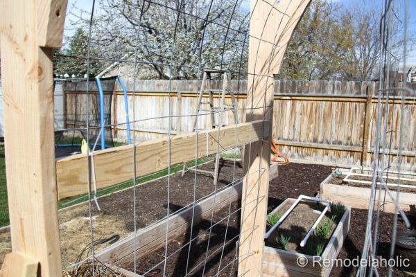 Vegetable Garden Arbor DIY Plans