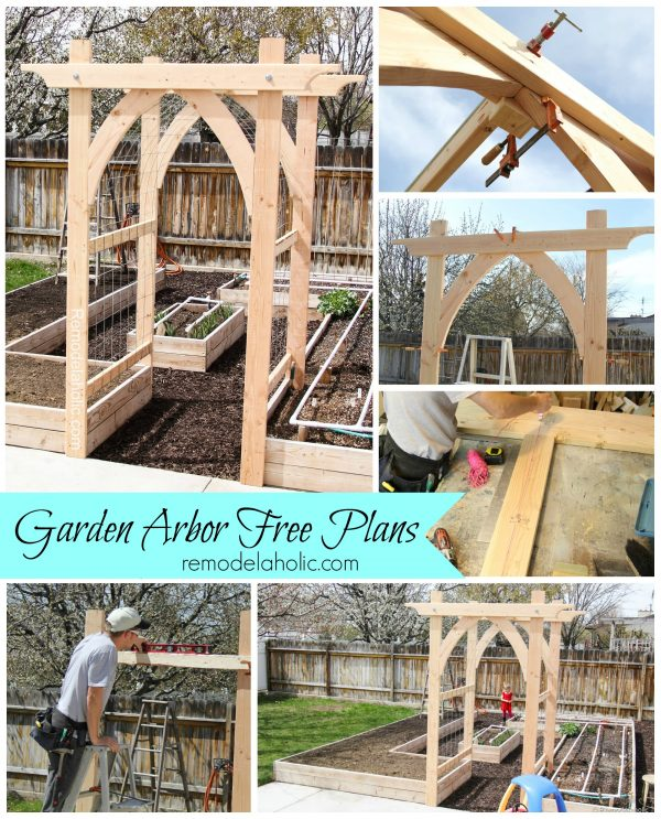 Vegetable garden arbor diy plans for Plans for arbors
