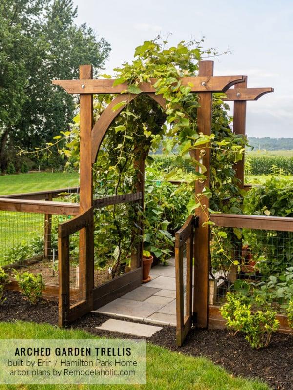 Arched Garden Arbor Trellis For Grapes, Fenced Raised Garden Boxes By Hamilton Park Home, Trellis Plans Remodelaholic