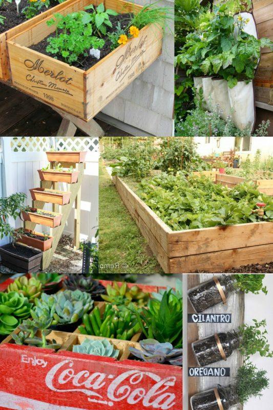 gardening wayfair