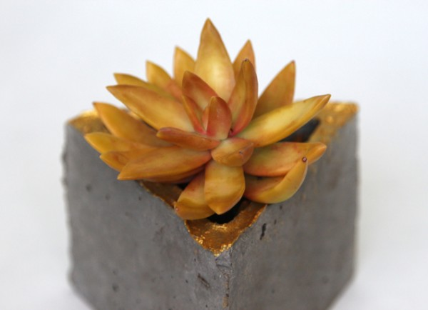geometric concrete planter with succulent, A Piece of Rainbow on Remodelaholic