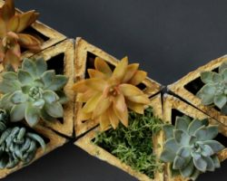 modern geometric concrete planters, A Piece of Rainbow on Remodelaholic