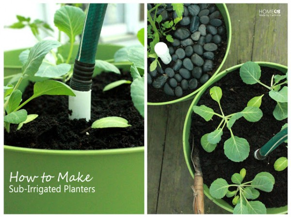 Sub-Irrigated Planters Tutorial