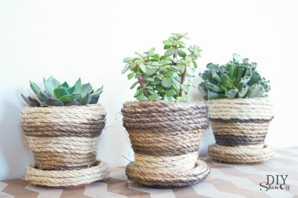 sisal rope succulent pots