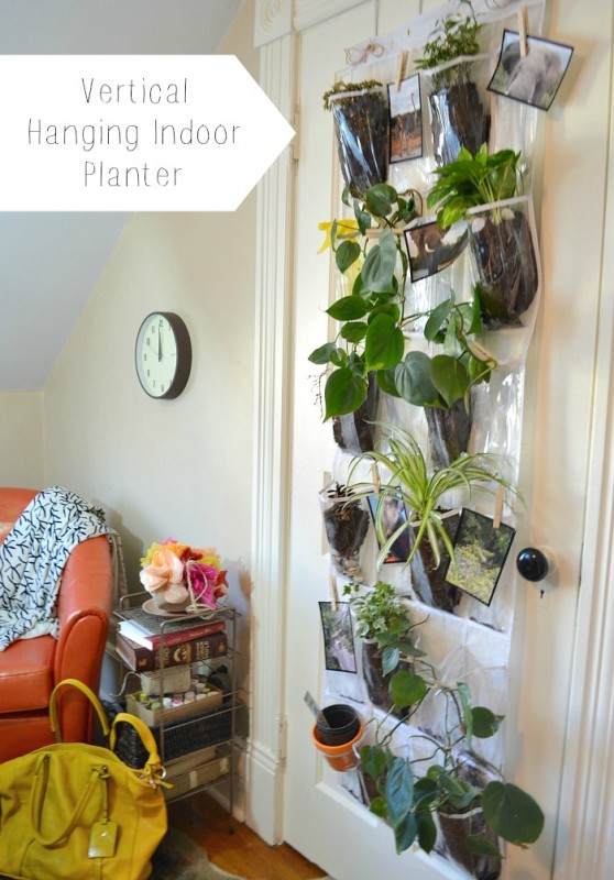 vertical hanging indoor planter