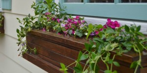 wood flower planter boxes