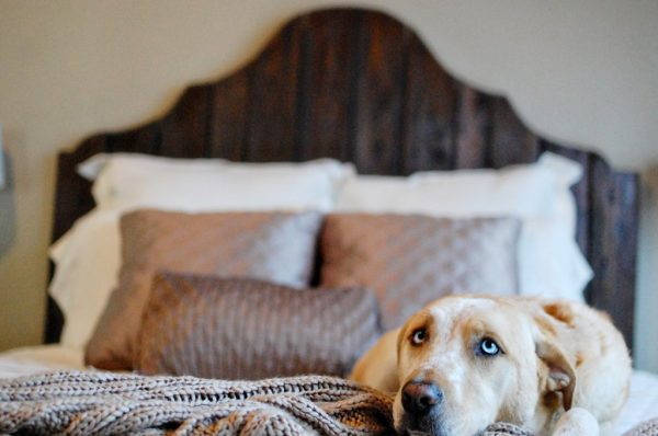diy rustic wood bed, The Accent Piece on Remodelaholic