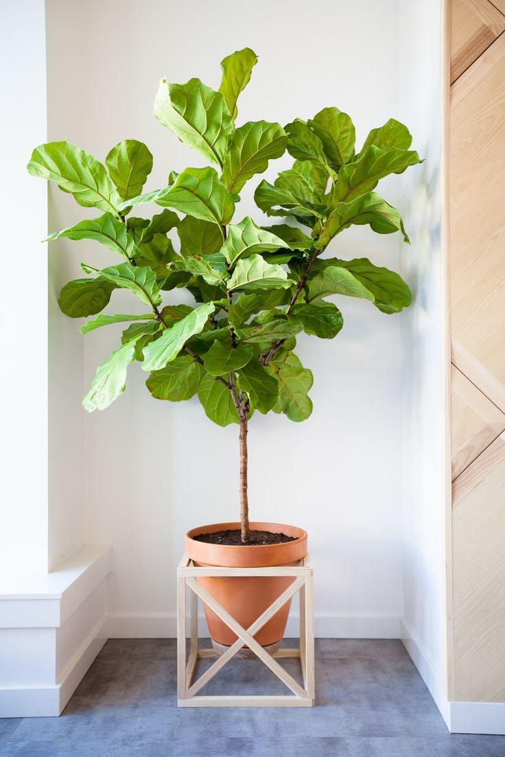 remodelaholic modern cube plant stand with optional fretwork. Black Bedroom Furniture Sets. Home Design Ideas