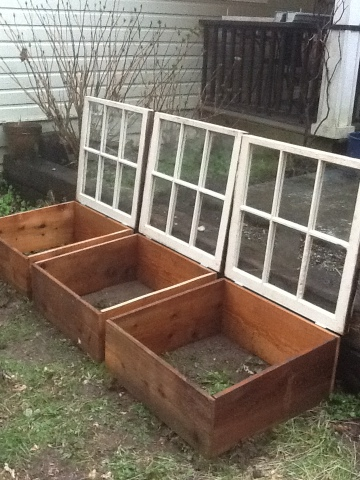 For The Love of Lillian - old windows as greenhouse cold frame doors - via Remodelaholic