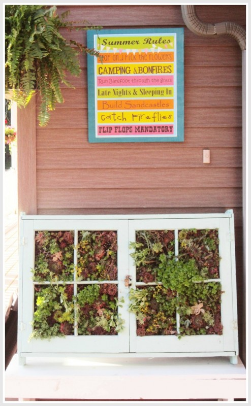 Second Chance to Dream - vertical succulent garden from old windows - via Remodelaholic