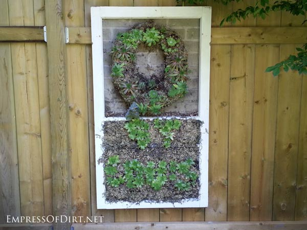 via Empress of Dirt - old window as a succulent planter - via Remodelaholic