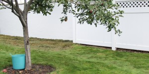 Painting a Cinder block fence @Remodelaholic (13 of 23)