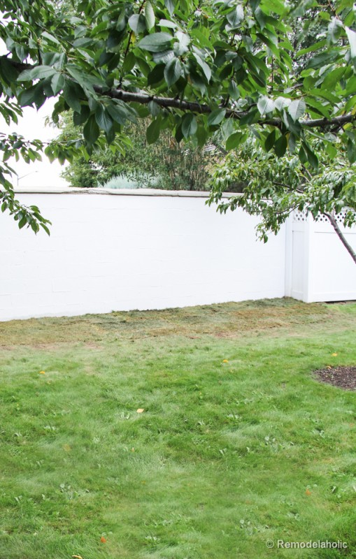 Painting a Cinder block fence @Remodelaholic (15 of 23)