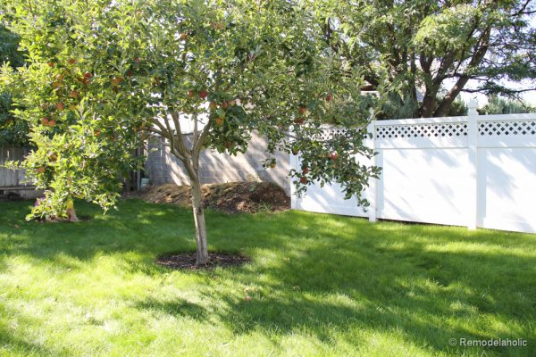 Painting a Cinder block fence @Remodelaholic (2 of 23)
