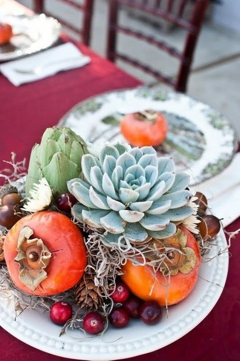 persimmon and succulents