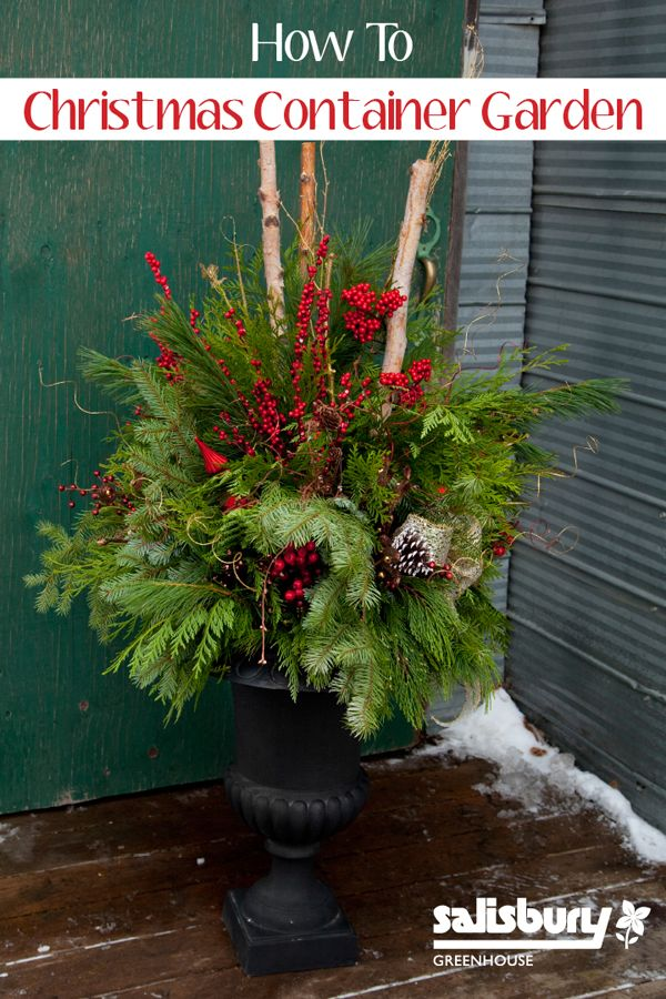 Winter Outdoor Decor Part - 29: For Your Planters And Window Boxesu2026