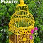 Bird-Cage-Planter-682x1024